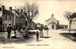 [77] Seine Et Marne >LE VAUDOUE  / PLACE  DE LA MAIRIE - Autres Communes