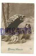 Bonne Année. Photographie Montage. Bébé, Chien (Coolie, Berger écossais) Et Parapluie Dans La Neige. REX  1912 - Nouvel An