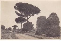 ROME,,,,VIA  APPIA ANTICA  REVINE Di  TOMBO  PAGANO,,,,SUPERBE  PHOTO,,,,TBE - Roma (Rome)