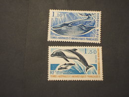 T.A.A.F. - 1977 CETACEI 2 VALORI  - NUOVI(++) - Terre Australi E Antartiche Francesi (TAAF)