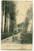 CPA - Carte Postale - Belgique - Sombreffe - L'Avenue Du Vieux Château  (C8676) - Sombreffe