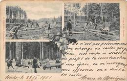 Pologne 1901 - Zu Gunsten Des Kirchenbaues In Nisko - Ed. Stengel Dresden - Balken Bezimmerung Klotzholz Erzeugung - Pologne