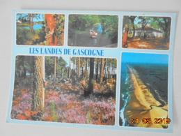Les Landes De Gascogne. Au Bord D'un Courant. Le Courant D'Huchet. Ferme Landais. Massif De Bruyeres. La Cote Aquitaine. - France