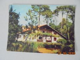 Villa Landaise Dans La Foret De Pins. Yvon EKB2972. - France