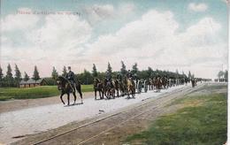 Artilleriebatterij Op De Hechtelse Stw - Leopoldsburg (Kamp Van Beverloo)
