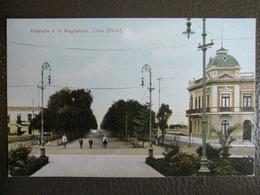 Antique Tarjeta Postal - Peru Perou - Alameda à La Magdalena - Lima - Polack-Schneider N°124 - Peru