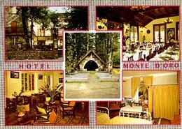 CORSE - VIZZAVONA - L'Hôtel Du Monte D'Oro : Salle à Manger, Chambre, Chapelle, Salon ...Propr. Melle Plaisant - France
