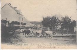 Tellin - Rue De L' Hôtel - Animé - 1906 - WVS Edit. Hôtel Golenvaux - Tellin