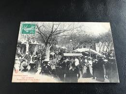 194 - ROMANS Promenade Du Champ De Mars - 1908 Timbrée - Romans Sur Isere
