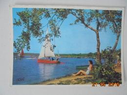 Visage Des Landes. Voiles Sur Un Lac. Vignes 625bis Postmarked 1966. - France