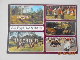 Visage Des Landes. Au Pays Landais. Images. Vignes Postmarked 1985. - France