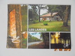 Les Landes. Pot De Resine. Maison Landaise. Paysages Landais. Cely 5059 Postmarked 1985. - France