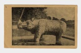 Postcard Of Rhinoceros Fountain At The Fountain In Vishwanath Mandir At Benares Hindu University, India, Lot # IND 668 - India