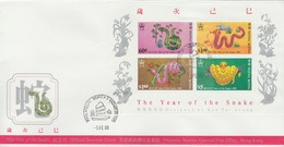 Hong Kong 1989 The Year Of The Snake Miniature Sheet FDC - Unclassified