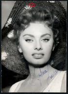 C5594 - Orig. Sophia Loren - Foto Autogramm Autogrammkarte - Schauspielerin - Autogramme & Autographen