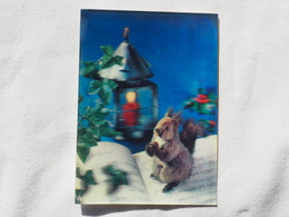 3d 3 D Lenticular Stereo Postcard Squirrel  Toppan Japan 1969   A 190 - Stereoscope Cards