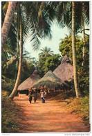 Village Sous Les Palmes. Grand Format - Cartes Postales