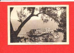 06 MONACO Cpa Le Rocher Entre Les Arbres    701 Bis Edit Bozon - Multi-vues, Vues Panoramiques