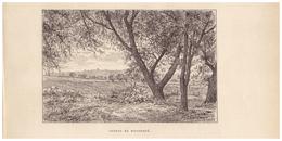 Gravure Sur Bois - 1904 - Montdoré (Haute-Saône) - Les Côteaux - FRANCO DE PORT - Estampes & Gravures