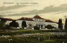 HOHENHEIM  Kgl Landwirtsschafil Hochschule Colorisée RV - Stuttgart