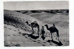 Best Wishes From Saudi Arabia Viaggiata Anni Cinquanta # - Arabia Saudita