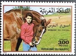 Morocco 1988 Horse Week - Morocco (1956-...)