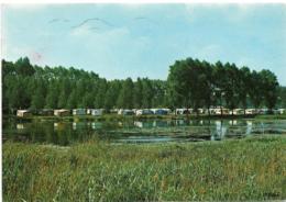 D62 - ECOURT - ST QUENTIN - CAMPING ET MARAIS - Nombreuses Caravanes Et Tentes - CPSM Grand Format - Frankrijk