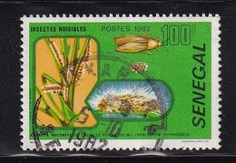 Senegal 1982, Insect, Minr 769, Vfu - Senegal (1960-...)