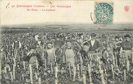 LA CHAMPAGNE Illustrée - Les Vendanges, Un Ordon, La Cueillette. - Vines