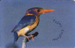 South Africa Chip R15, Kingfischer, Bird, Fauna - Afrique Du Sud