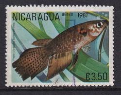 Nicaragua 1981, Fish, Minr 2213, Really Used - Nicaragua