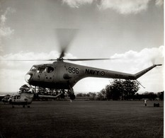 BRISTOL SYCAMORE    ++ 24 * 18 CM DE HAVILLAND  AIRCRAFT - Aviación