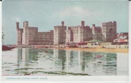 Postcard - Caernarvon Castle North Wales - No Card No.. -  Unused Very Good - Unclassified