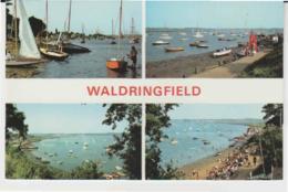 Postcard - Waldringfield Four Views - Card No.. Fwp007 -  Unused Very Good - Unclassified