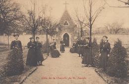 Mont St. Amand - Sint Amandsberg -  Allée De La Chapelle De St. Joseph - Gent