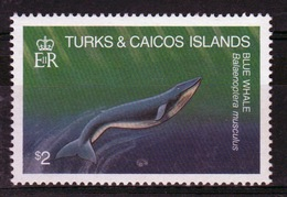 Turks And Caicos $2 Single Stamp From The 1983 Whales Set. - Turks And Caicos