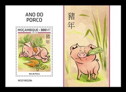 Mozambique 2019 Mih. 10230 (Bl.1486) Lunar New Year. Year Of The Pig MNH ** - Mozambique