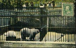 CPA - Le Zoo - Detroit