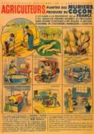 LA SOIE Musée Des Vallées Cévenoles 95 Grand Rue Saint-Jean-du-Gard  34 (scan Recto-verso)MA2164Ter - France