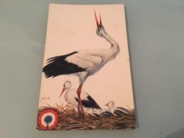 Ancienne Carte Postale - Illustrateur - Igor - Illustrateurs & Photographes