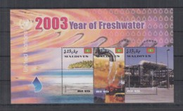 S252. Maldives - MNH - Culture - Year Of Freshwater - Cultures