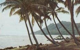 HONOLULU , Hawaii , 1956 ; Diamond Head From Black Point - Honolulu