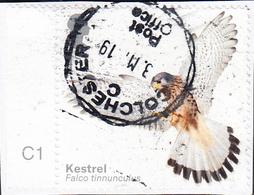2019  Birds Of Prey (2019) -  Eurasian Kestrel (Falco Tinnunculus)  1st  On Paper - 1952-.... (Elizabeth II)