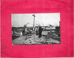 BOULOGNE SUR MER - 62 -  Déchargement Du Poisson - ARD - - - Boulogne Sur Mer