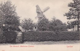 AP49 The Windmill, Wimbledon Common, London - Undivided Back - London Suburbs