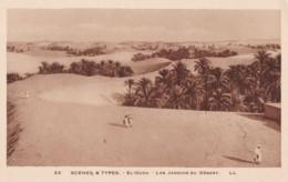 AQ30 Ethnic - Scenes Y Types, El Oued, Les Jardins Du Desert - LL - Africa