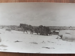 Brignogan.photo Format Carte Postale Vers 1950.même Provenance - Brignogan-Plage