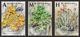 Pre-order Belarus 2019 - Lichens, S/s MNH. Flora Licheni Lichen Korstmos Korstmossen Bielorussia/Biélorussie/Wit-Rusland - Plants