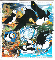 JERSEY ISL.(GPT) - Puzzle Of 6 Cards, Puffins, CN : 68JERA-B-C-D-E-F(normal 0), Tirage %20000, Used - Phonecards