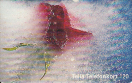 SWEDEN(chip) - Rose In The Ice, 04/99, Used - Sweden
